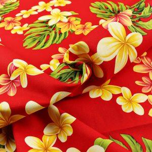 Hawaii Canvas red