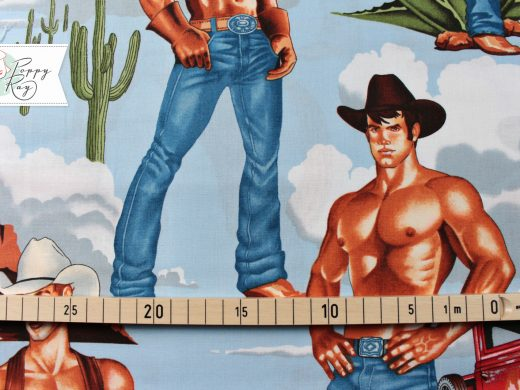 Alexander Henry Stoff Cowboys Pin Up retro