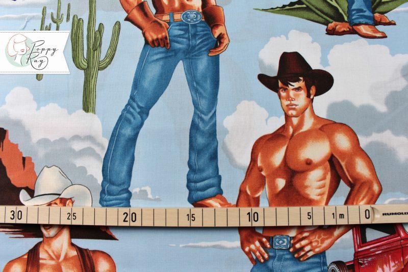 Alexander Henry Stoff Cowboys Pin Up retro